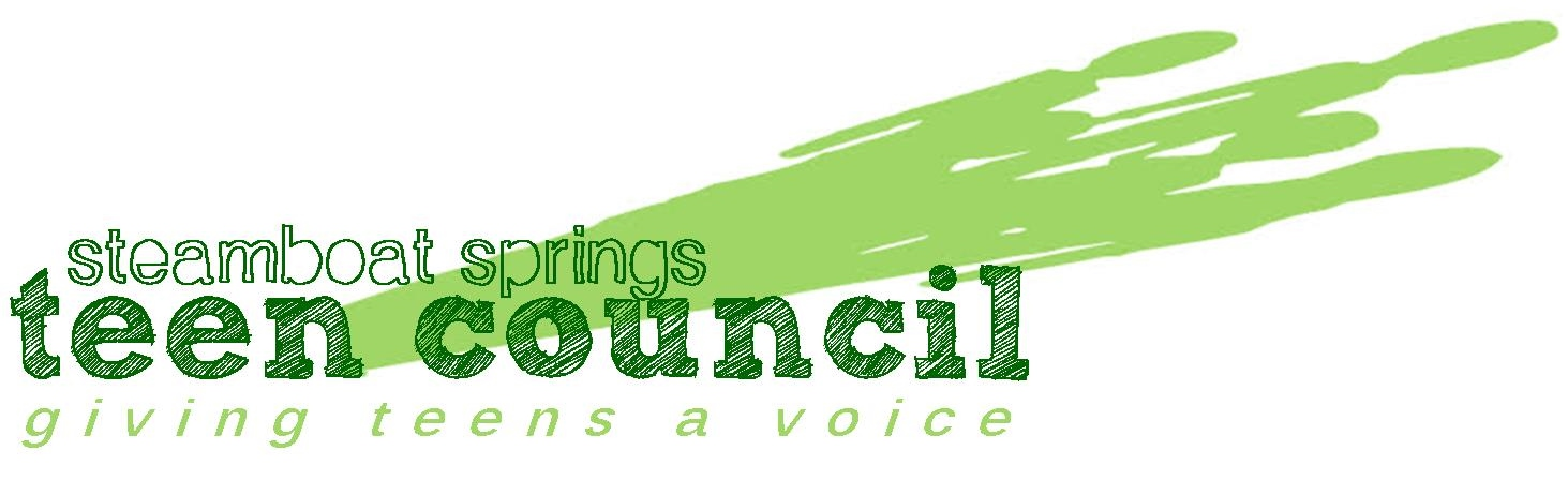 2013 Teen Council Logo